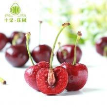 美国空运车厘子 新鲜水果进口大樱桃 2斤装