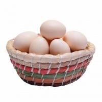 农家鸡蛋15KG.30斤